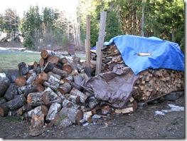 02-17-08 wood splitting 002