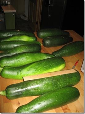 09-20-07 Zucchini Harvest 006